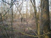 Allenamenti nel bosco