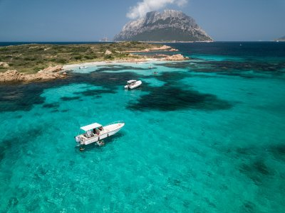 Sea Bounty Tourist Service