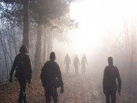 Nel Campo di Battaglia
