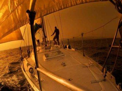 Nemo Sailing