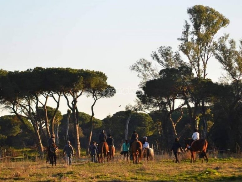 a cavallo a roma