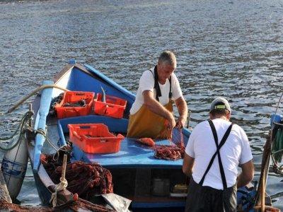 Terraferma Diving Pesca
