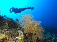 Excursions in the Mediterranean