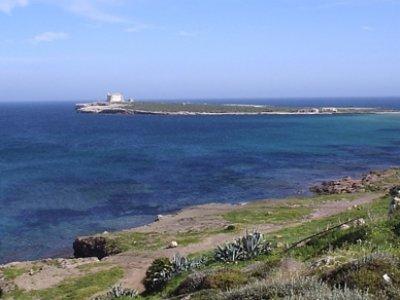 Sicilia In Barca Escursione In Barca