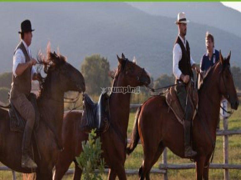 Escursioni per gruppi a cavallo