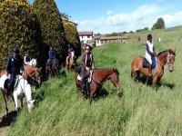 Horse riding in the Mincio Park