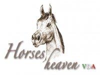 Andrea Cornaz - Horses VDA