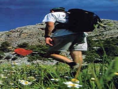 Lyskamm 4000 Guide Alpine Trekking