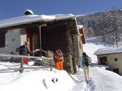Guide Alpine Ortler-Cevedale