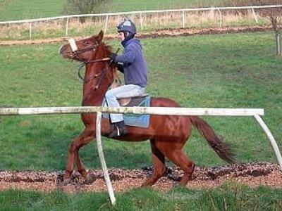 Le Ceregne Passeggiate a Cavallo
