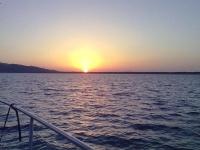 Noleggio barca argentario