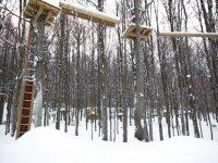 Il parco in inverno
