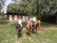 Sui pony