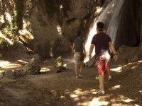 Cammino Verso Le Cascate