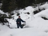 Snowshoeing among the paths