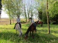 Sosta con i nostri cavalli