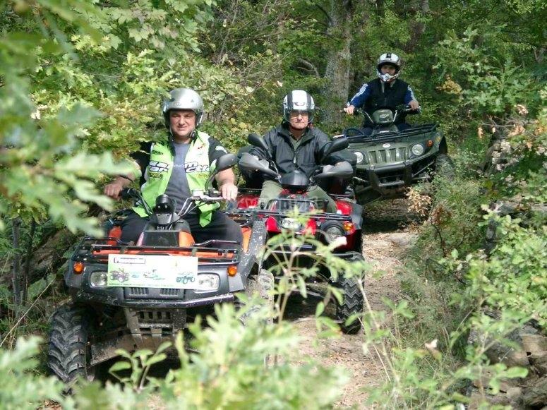 Avventura nel bosco in quad