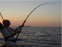 Battute di pesca alla traina