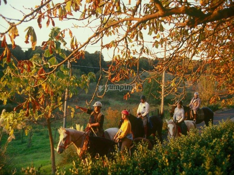 Passeggiata a cavallo nell Oasi Naturale