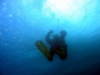 Immersioni open water