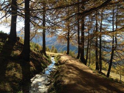 Trekking Serous da Grange di Valle Stretta 8ore