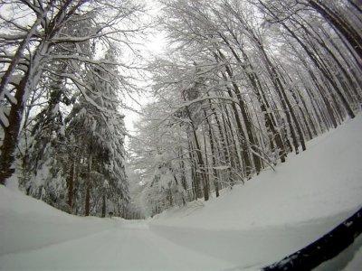 Makai Kitesurf School Snowboard