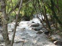 Il corso del fiume tra i boschi