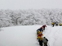 Scoprendo i panorami innevati