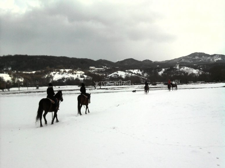 A cavallo sulla neve in Abruzzo.jpg