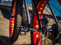 Mountain bike a noleggio