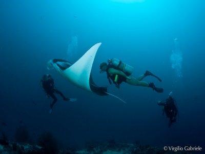 FIAS Caserta Diving