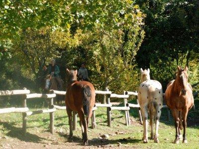 Due giorni a cavallo nel Parco della Maremma