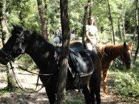 Due giorni a cavallo nel verde Sabino