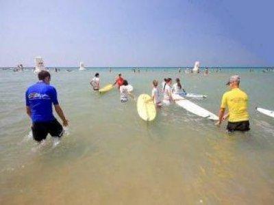 Wild Zone Surf