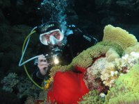 Photographing the corals