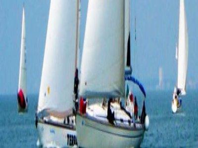 Terre di Mare Escursione in Barca