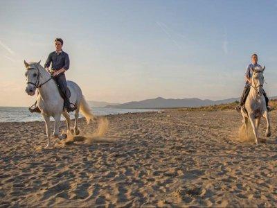 Passeggiata a cavallo spiaggia Grosseto 1 ora e 30