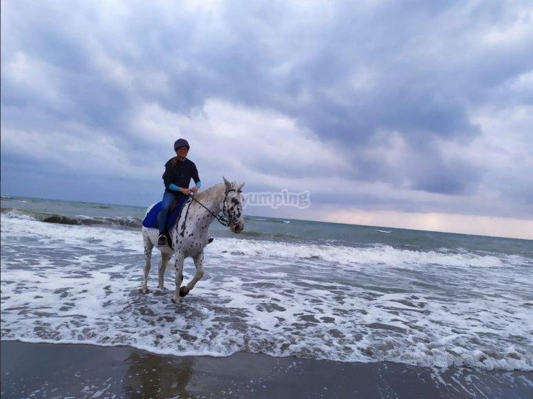 a cavallo sulla batigia