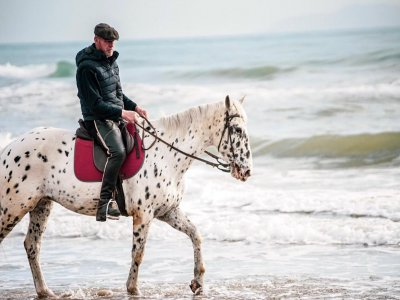 Passeggiata a cavallo pineta del Tombolo di 1ora