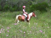 con i nostri pony