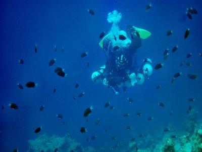 Corso Open Water Diver + 2 specialità + AAD