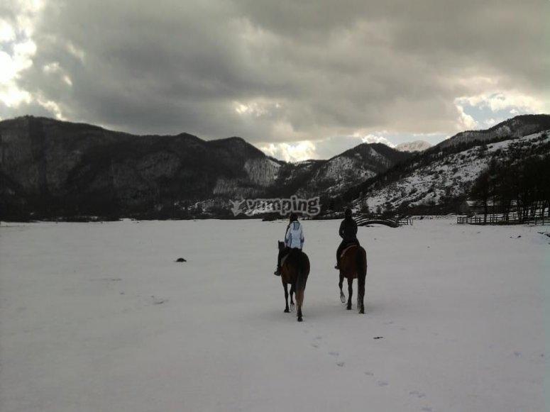 Cavallo e neve