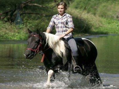 Agriturismo Ca' Borgh Passeggiate a Cavallo
