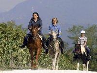 Trekking e passeggiate a cavallo