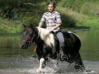 Horse riding courses