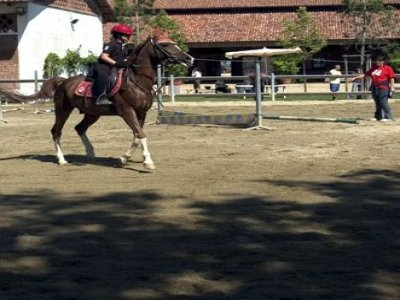 Queen Isabel Horse and Pony Club