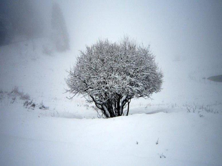 Fine settimana sulla neve