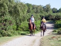 Horse ride to the Madonie Park 1 hour