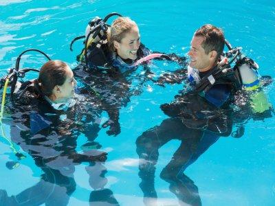 Diving Yoghi
