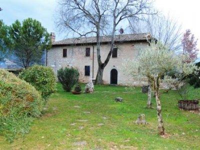 Villa Fabbri Enoturismo